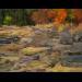 Shoreline Fall